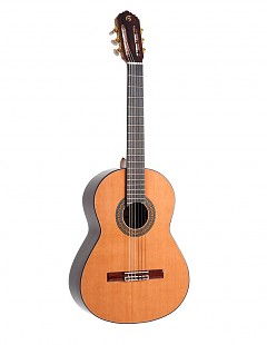 Guitarra clásica española B50