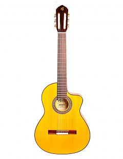 Guitarra flamenca B20FC