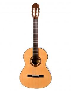 Guitarra clásica española B5